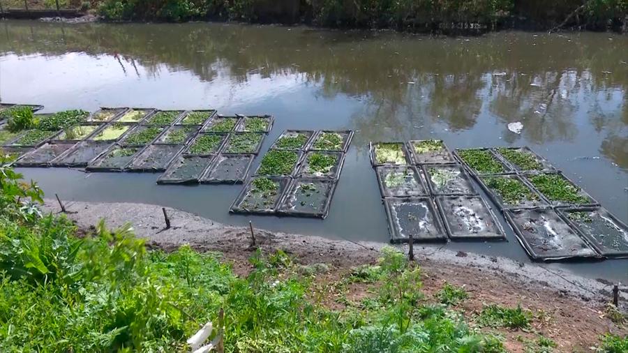 La historia del río que necesitaba ser biorremediado