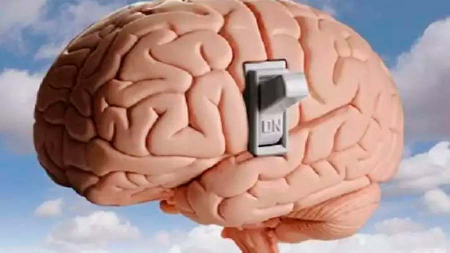 Hallan un 'interruptor eléctrico' crucial en el cerebro asociado al aprendizaje