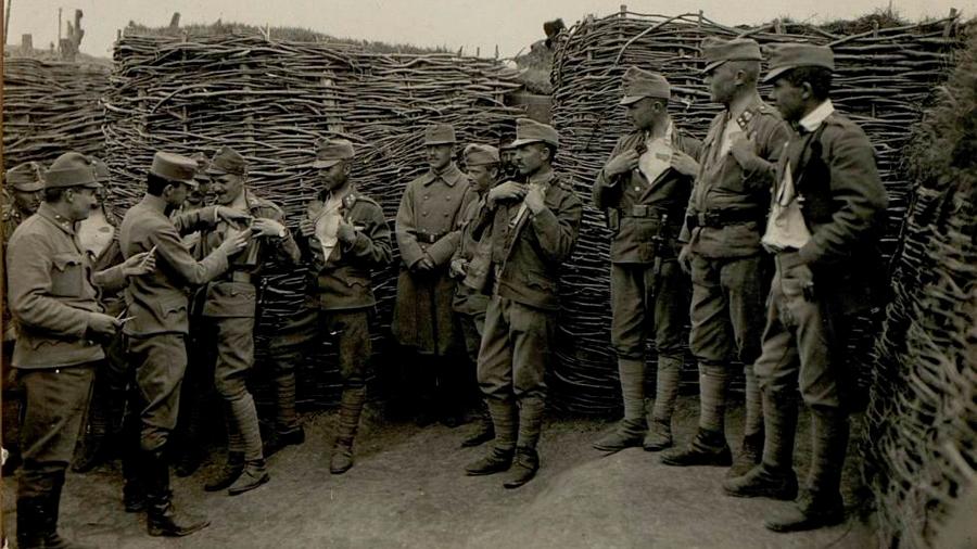 Resucitada la bacteria del cólera de un soldado de la Primera Guerra Mundial
