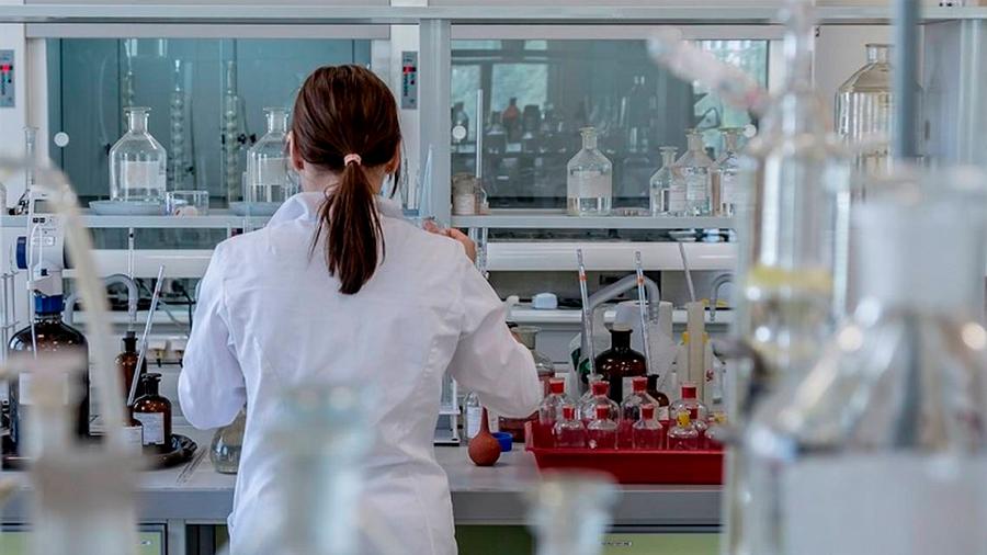 Ciencia Básica: Haciendo camino