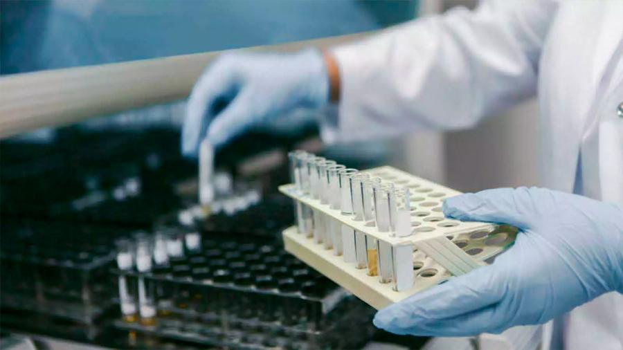Descubren que desactivar dos proteínas hace más eficaz la quimioterapia