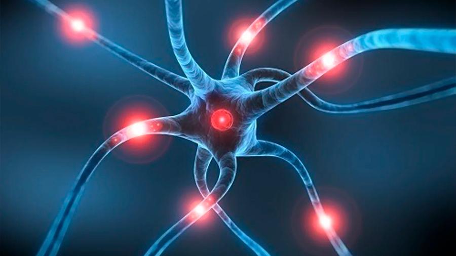 Investigadores canadienses desarrollan tratamiento que mejorar movilidad de pacientes con parkinson