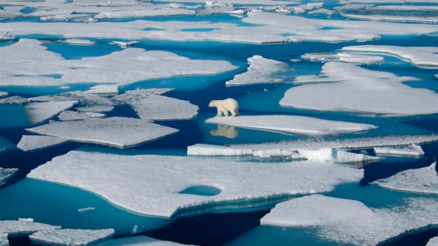 Un millonario suizo dona mil mdd para proteger el 30% del planeta