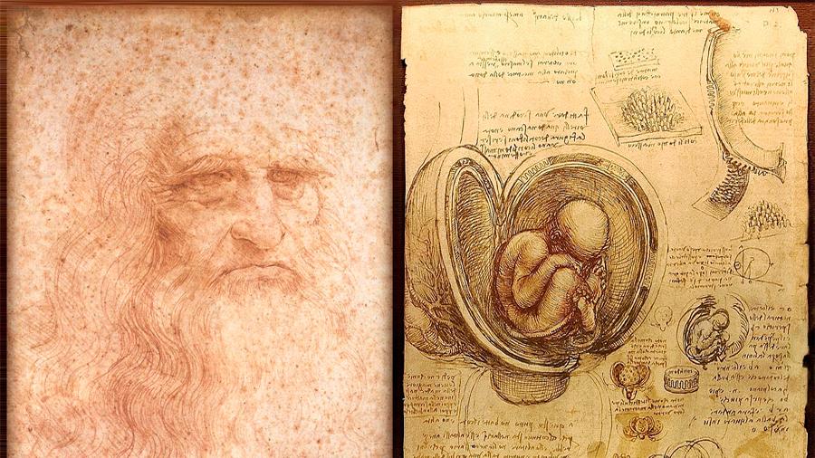Cinco siglos sin Leonardo, el genio que dibujó las entrañas del cuerpo humano