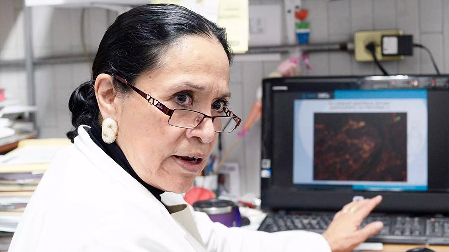 Desarrolla investigadora mexicana anticuerpo para detección y tratamiento de cáncer gástrico
