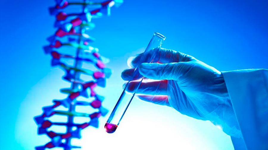 Las pruebas de ADN se tornaron multimillonario negocio y cuáles son los riesgos de entregar tu código genético