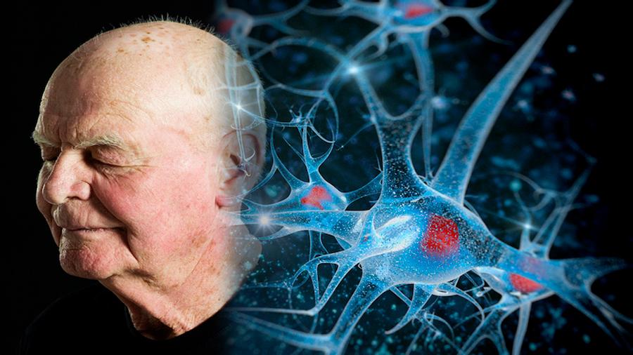 Brilla científico chileno en la revolución de los avances para detener el envejecimiento