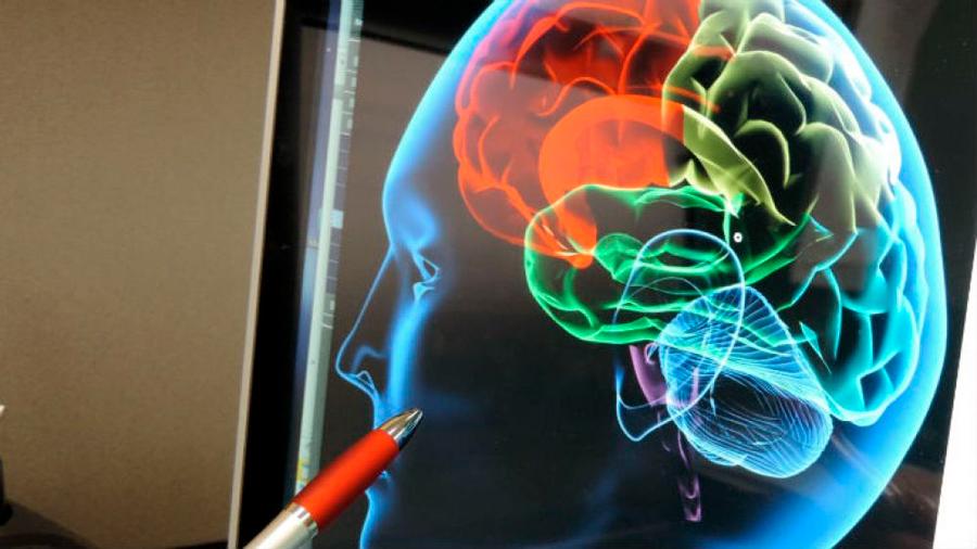 Científicos chinos utilizan implantes de estimulación cerebral para combatir la adicción a las drogas