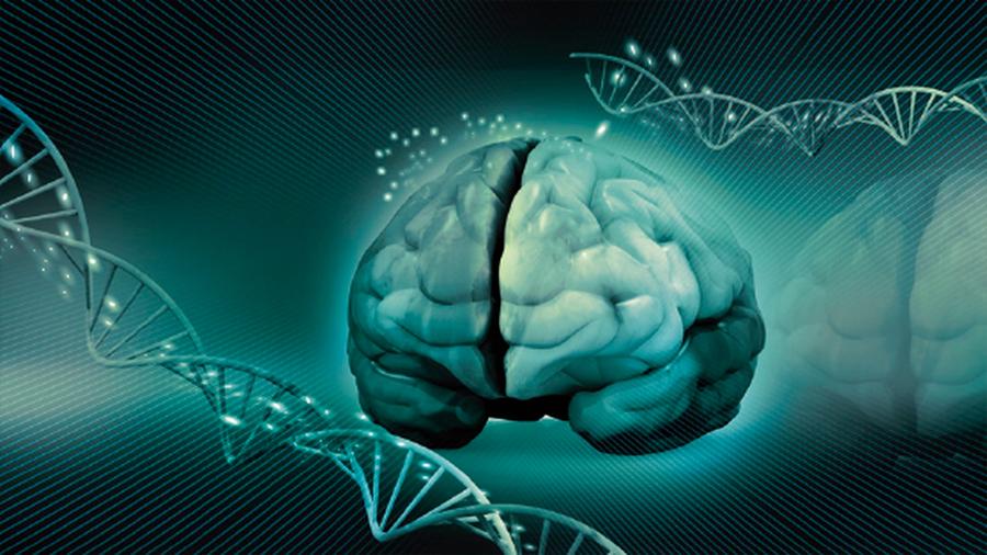Secuencian el genoma de mil argentinos para estudiar el Mal de Alzheimer