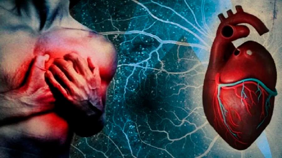 Células madre placentarias pueden regenerar el corazón tras un ataque cardíaco