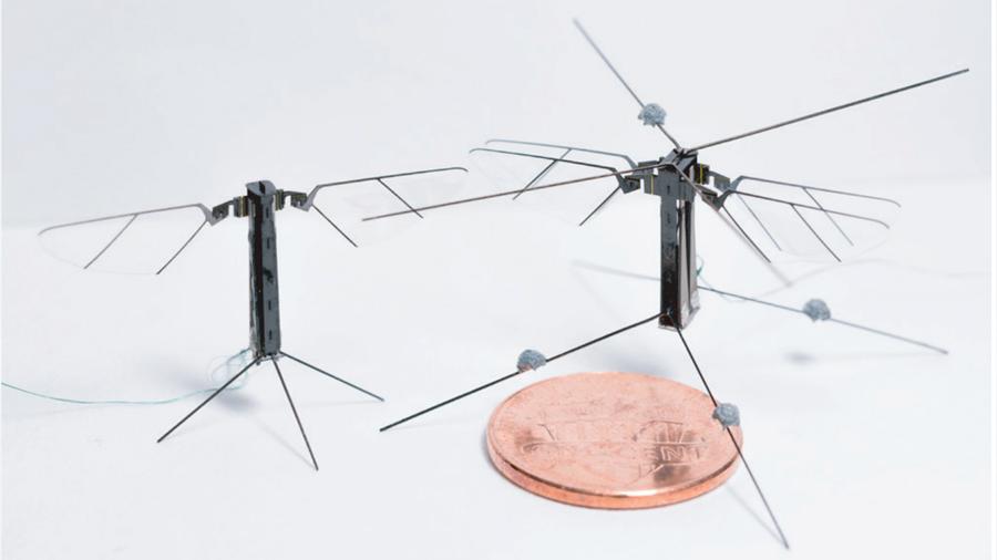 Bee +, el diminuto robot de cuatro alas que vuela casi como un insecto