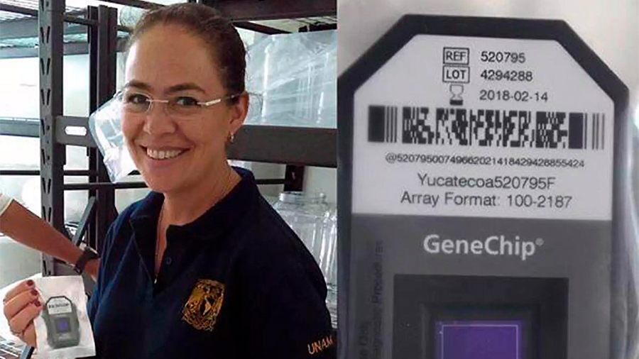 Crean en la UNAM dispositivo que detectar patógenos en cualesquier ambiente o superficie