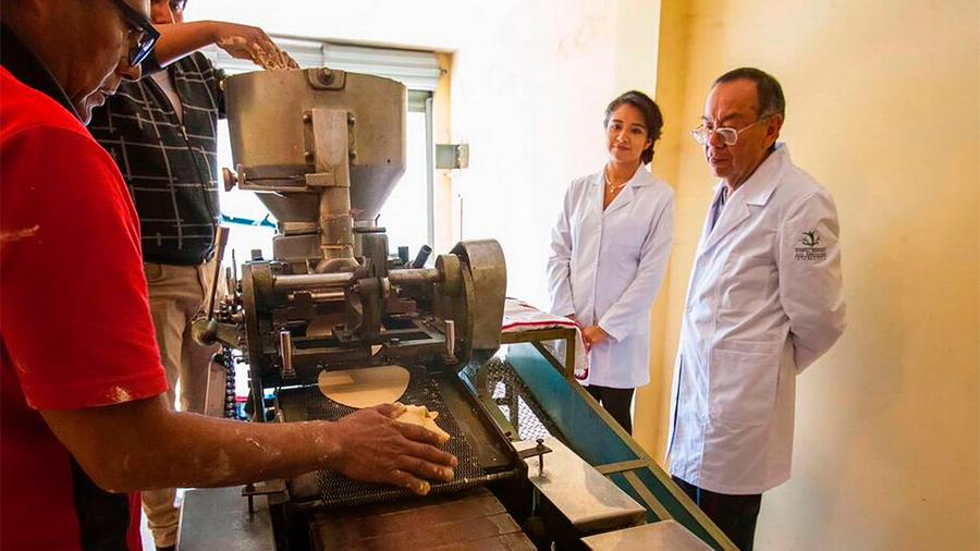 Crean científicos tortilla de cebada para ayudar en el control de glucosa en sangre