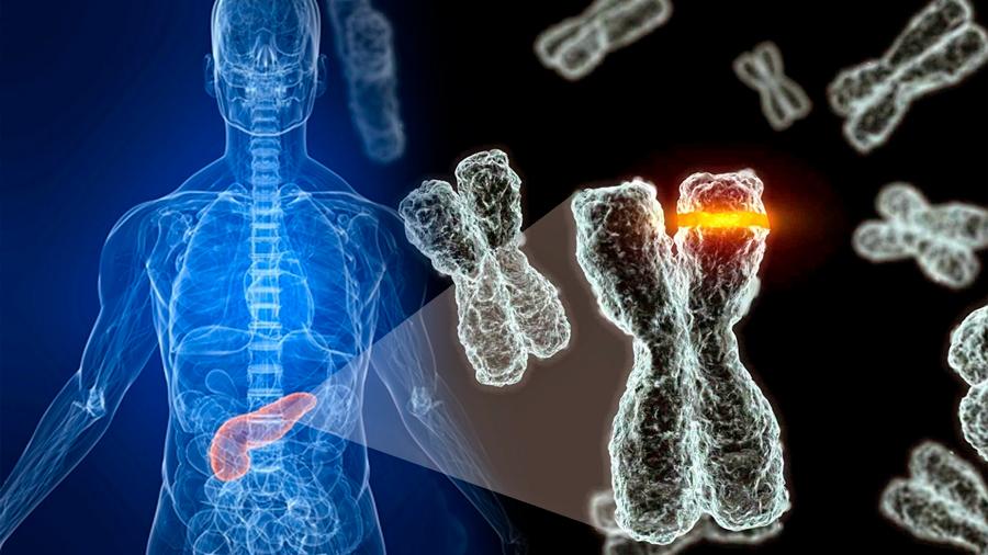 Vinculan raras alteraciones del ADN a la diabetes tipo 2