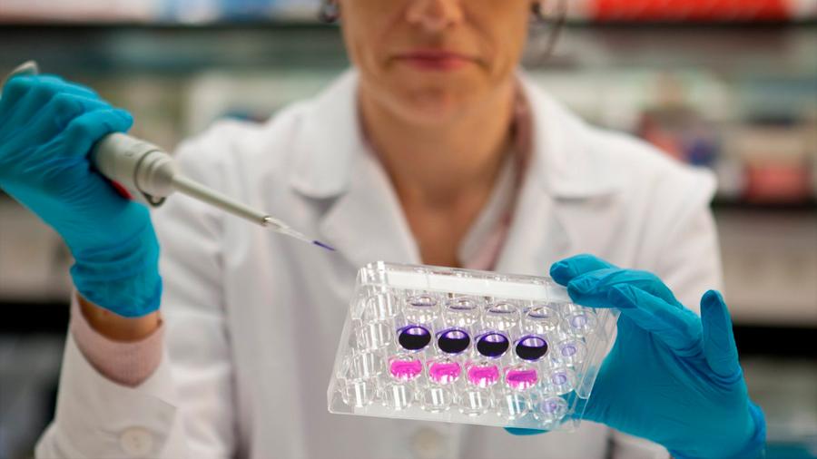 Un virus transgénico ataca los tumores cerebrales pediátricos más letales