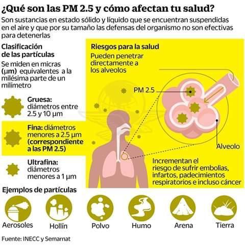 ¿Qué son las PM 2.5 y cómo afectan tu salud?