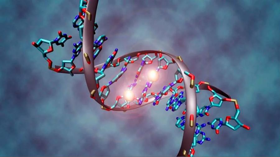 Un nuevo modelo matemático para ver cómo interactúan los genes
