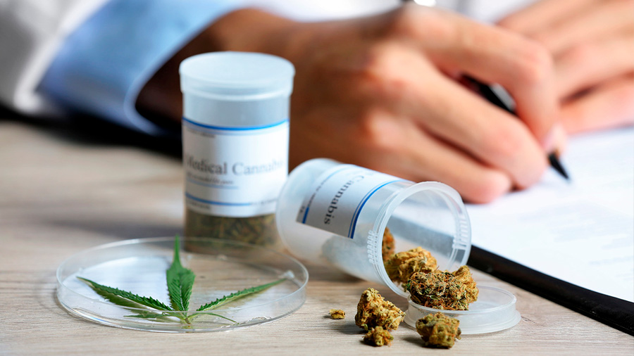 La marihuana medicinal no reduce las muertes por sobredosis de opioides