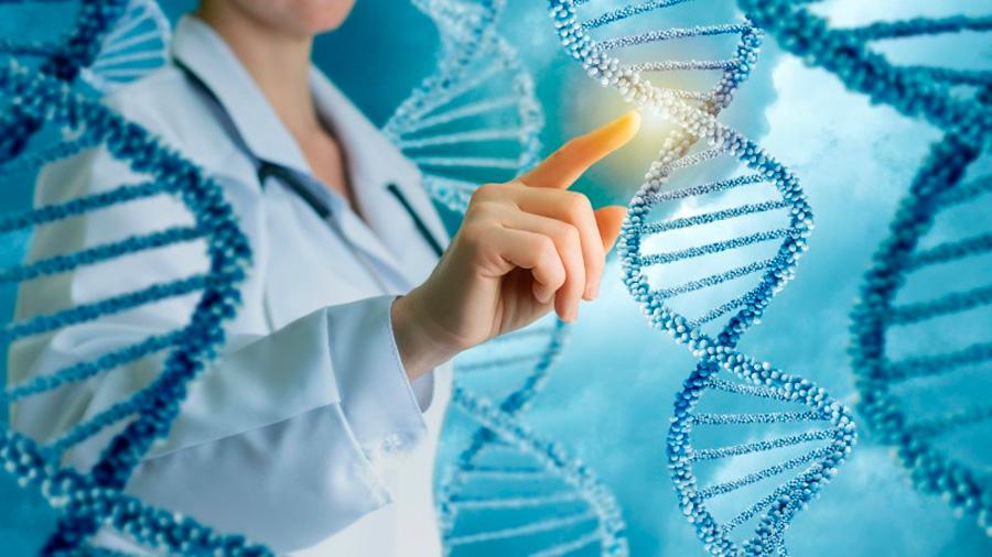 Nueva técnica de edición genética evita mutaciones involuntarias