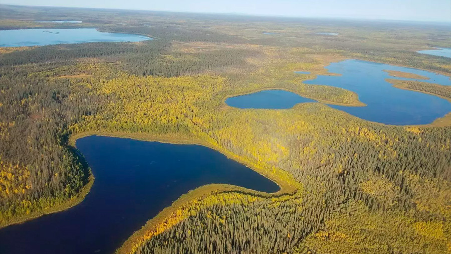 Un nuevo estudio muestra presencia de DDT en lagos remotos 50 años después de su prohibición
