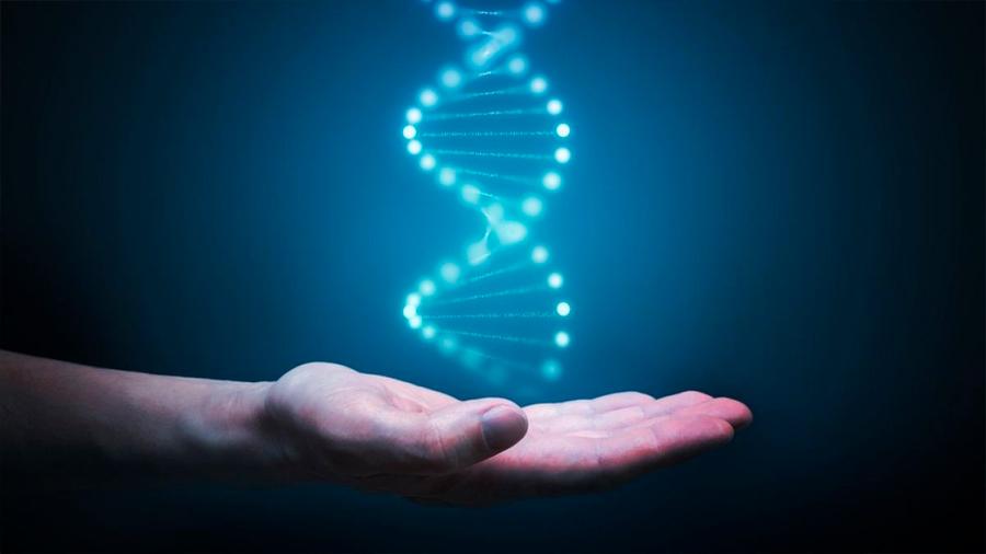 El secreto de una mejor salud puede estar tan sólo en el 1% de tu ADN