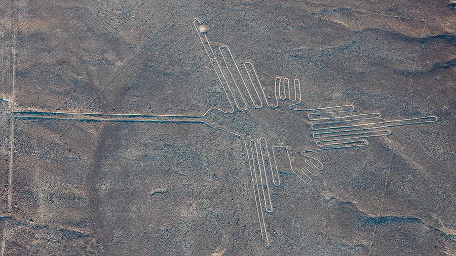Las enormes aves dibujadas en Nazca (Perú) son colibríes o pelícanos