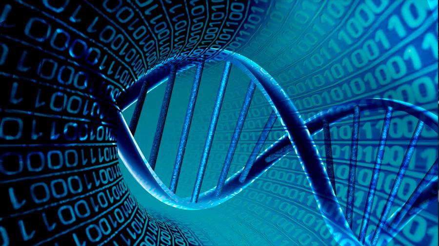 La genómica y la informática podrían resolver el anonimato de nuestros desaparecidos