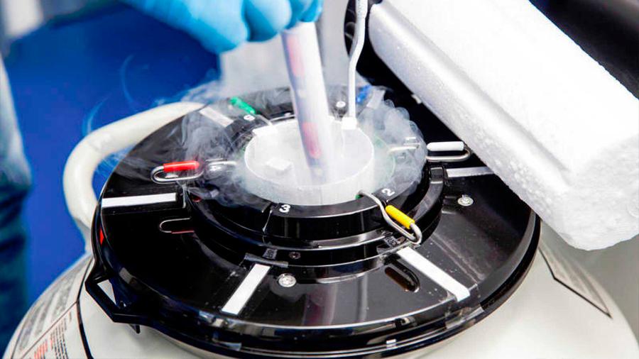 El semen congelado es viable para reproducir humanos fuera de la Tierra