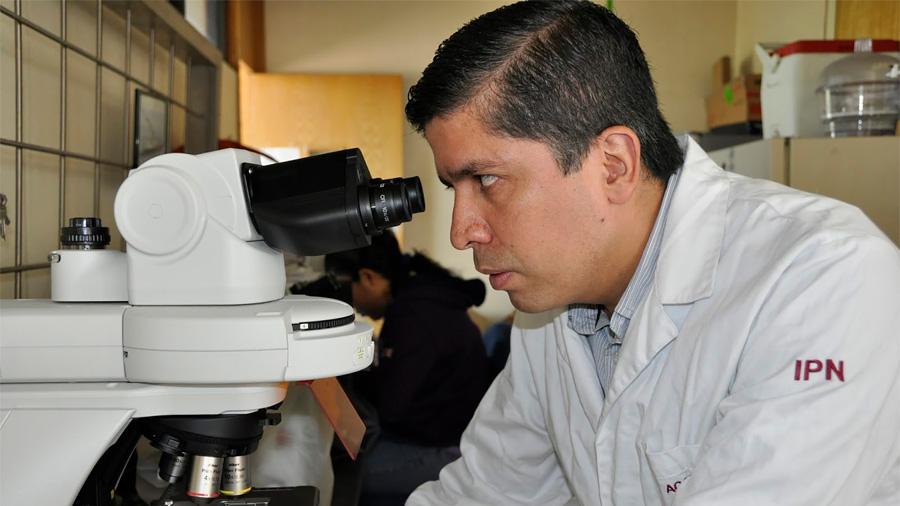 Encuentra científico mexicano en desechos agroindustriales las propiedades del plástico para sustituirlo