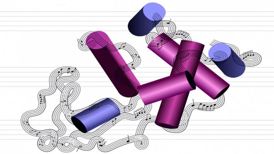 Logran convertir estructuras moleculares de proteínas en música y viceversa