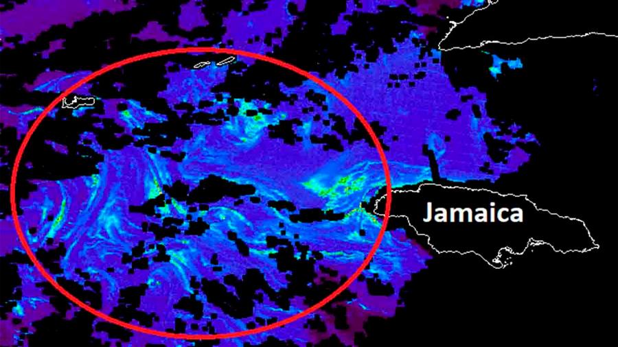 Satélites detectan 'enorme' mancha de sargazo; llegaría a Cancún: 550 kilómetros de diámetro