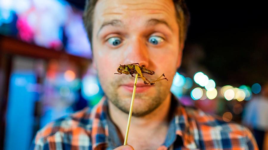 Razones (a favor y en contra) de comer insectos