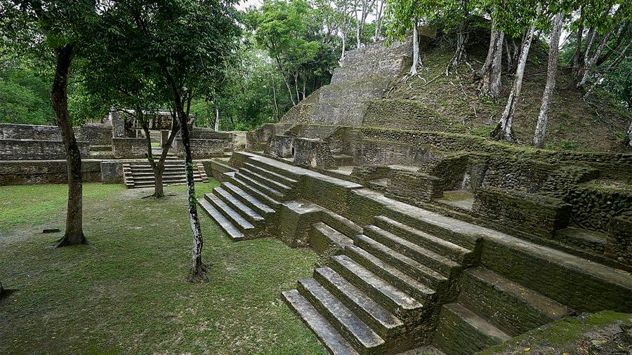 Una dieta centrada en maíz pudo contribuir al colapso de los mayas