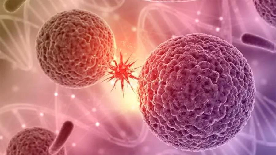 Científicos habrían encontrado el 'talón de Aquiles' del cáncer