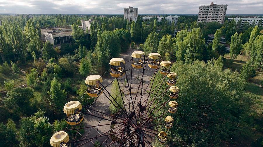 Las plantas de Chernóbil sobrevivieron a la radiación y al cáncer. ¿Su secreto? Modificar sus genes
