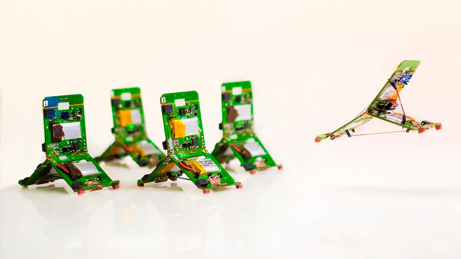 Pequeños robots inspirados en hormigas actúan colectivamente