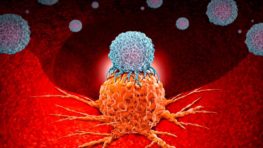Descubren una nueva clase de fármacos que podrían eliminar las células madre del cáncer