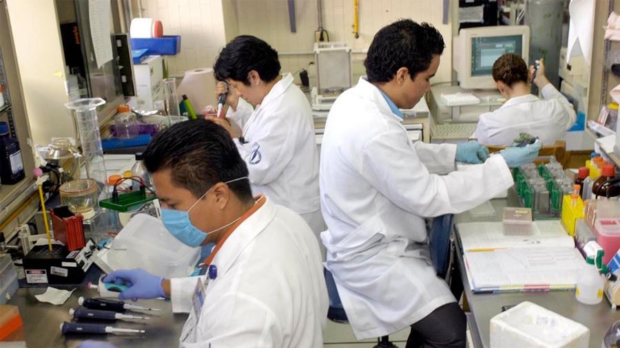Futuro de la ciencia en México es incierto, dicen 5 investigadores que deciden migrar