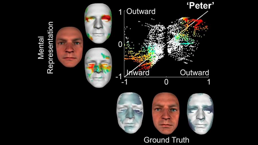 Nueva tecnología es capaz de convertir una imagen mental en una virtual