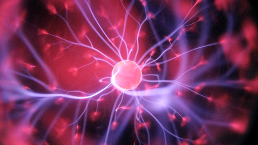 Las neuronas hierven mientras dormimos