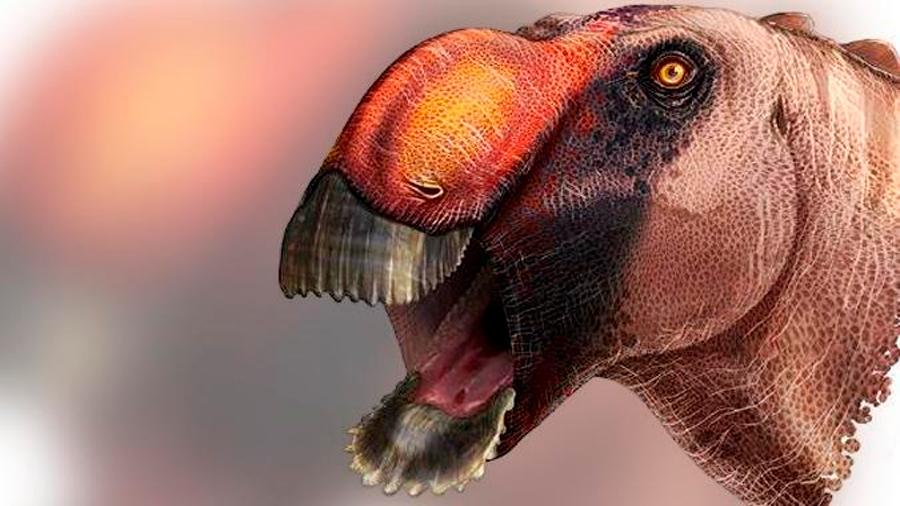 Identificada una extraña nueva especie de dinosaurio con pico de pato