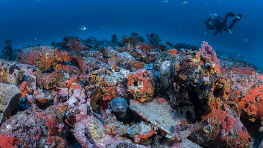 Bañista halla nave romana de los siglos III y IV mientras nadaba en una playa urbana