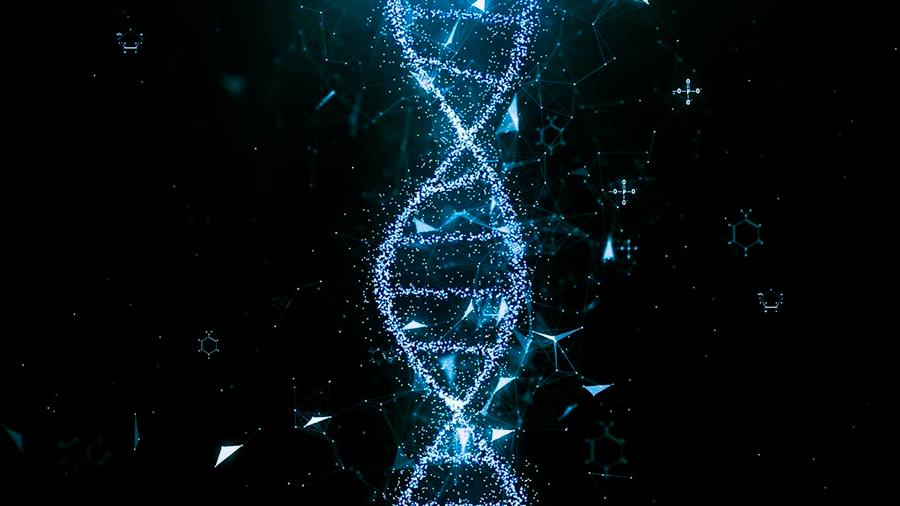 Genes ocultos en el ADN 'basura', una nueva sorpresa en el mapa de la vida