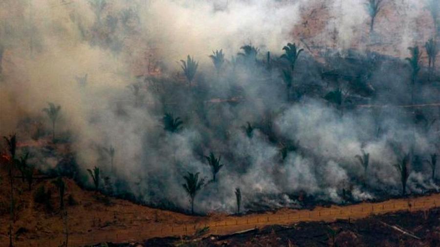 Identifican a tres sospechosos de causar los incendios en la Amazonia