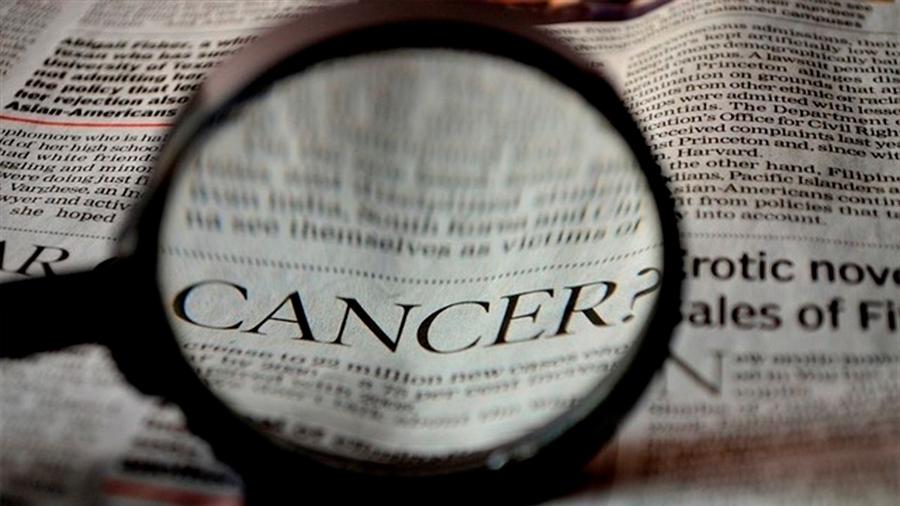 Descubren una nueva señal que usan los cánceres para evitar ser detectados y destruidos por el sistema imnunitario