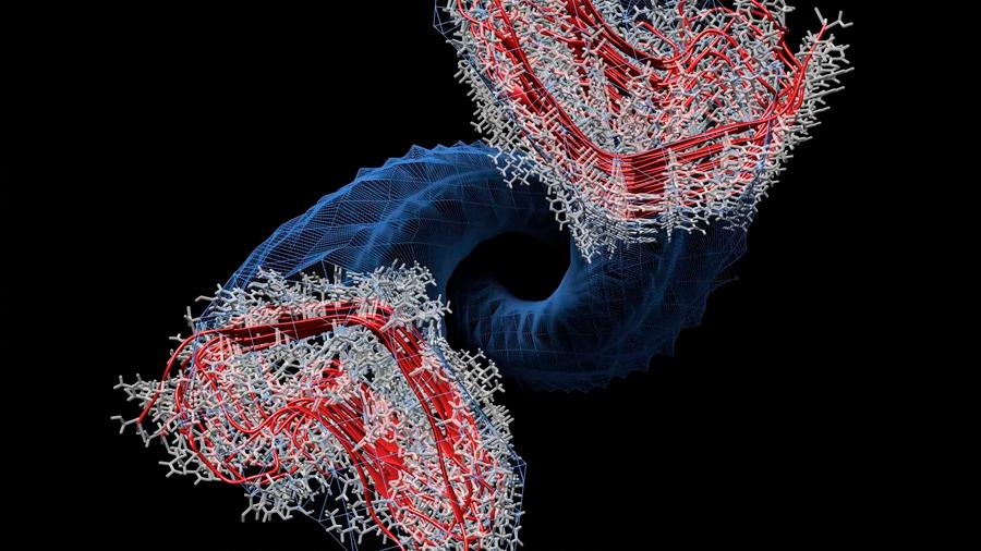 Descubren el mecanismo de replicación de los priones en el 'mal de las vacas locas'