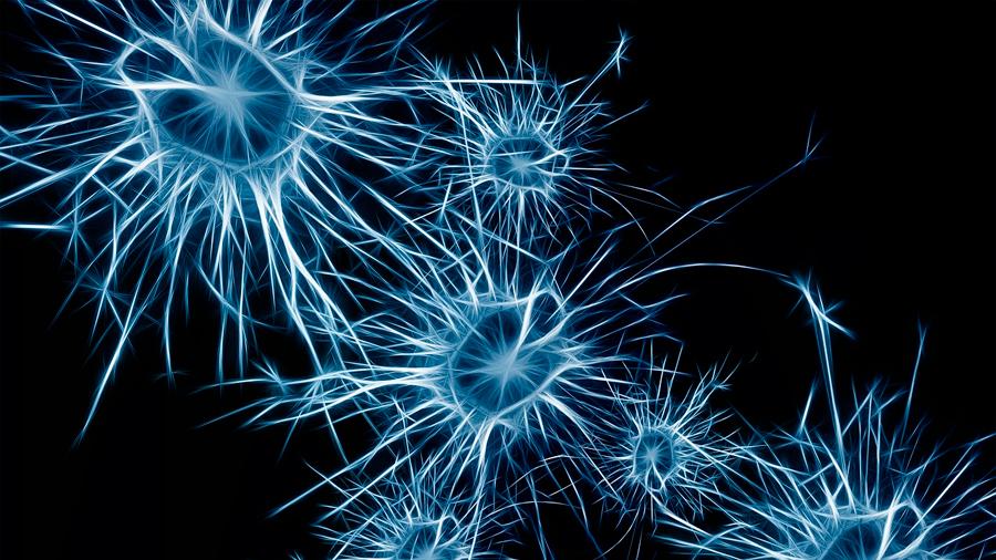 Crean neurona superconductora de nanohilos que en muchos aspectos se comporta como una real