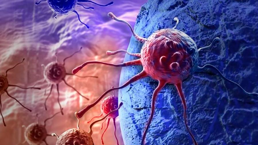 Avance esperanzador: logran combinar con éxito tres drogas contra el cáncer