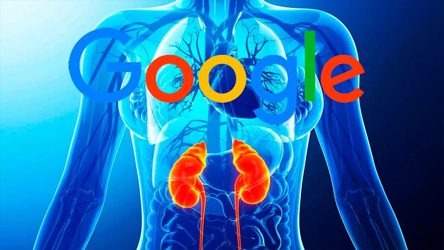 Un algoritmo de Google puede detectar insuficiencia renal antes que médicos aprecien síntomas
