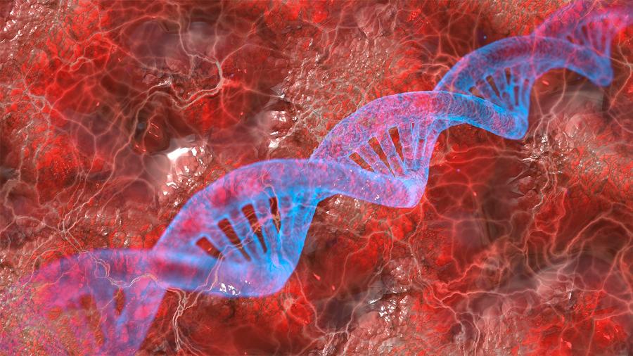 Descubren un 'efecto mariposa' que controla capacidad de las células para generar un organismo completo